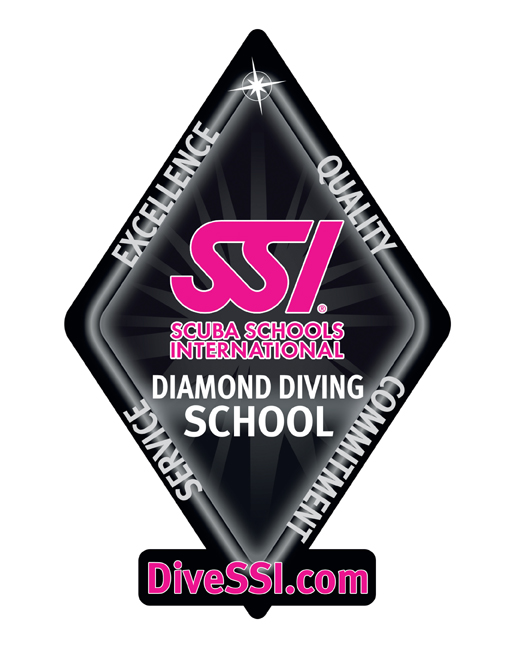 diamond diving school